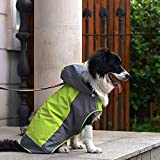 i'Pet® Dog Hooded Rain Slicker Waterproof Jacket Dog Rain Poncho Rain Coat for Medium to Large Dogs for Golden Retriever, Samoyed, Akita, Labrador Retriever, Brittany Spaniel, Huskies, Bulldog, Collie, Schnauzer, Springer Spaniel Breeds (12, Green)