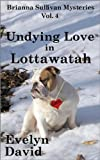 img - for Undying Love in Lottawatah (Brianna Sullivan Mysteries) book / textbook / text book
