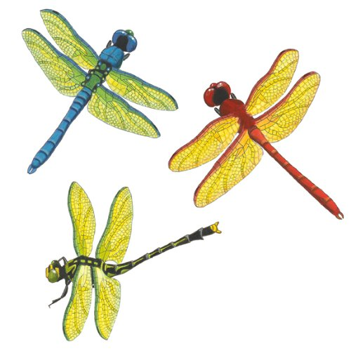 Wild Life Animals Wall Sticker Mural Dragonflies