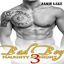 Bad Boy: Naughty at Night 3 Audiobook by Jamie Lake Narrated by James Talbot