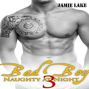 Bad Boy: Naughty at Night 3 Audiobook