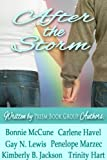 img - for After the Storm book / textbook / text book