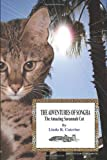 The Adventures of Songha: The Amazing Savannah Cat