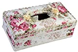 Tissue Box - Attractive and Beautiful Decorative Tissue Holder for your Home or Car (White)