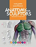 img - for Anatomy for Sculptors, Understanding the Human Figure book / textbook / text book