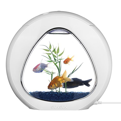 tmei aquarium complet table led fish tank pour poisson rouge et tortue. Black Bedroom Furniture Sets. Home Design Ideas