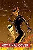 img - for Catwoman Vol. 3: Under Pressure book / textbook / text book