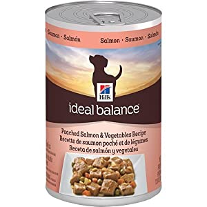 Hill's Ideal Balance Poached Salmon and Vegetables Recipe 12-Pack Dog Food Can, 12.8-Ounce