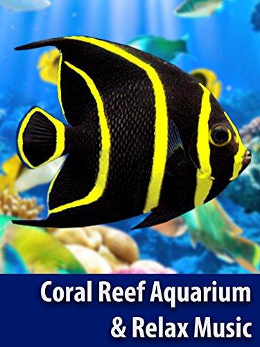 Coral Reef Aquarium & The Best Relax Music