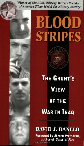 Image of Blood Stripes: The Grunt's View of the War in Iraq