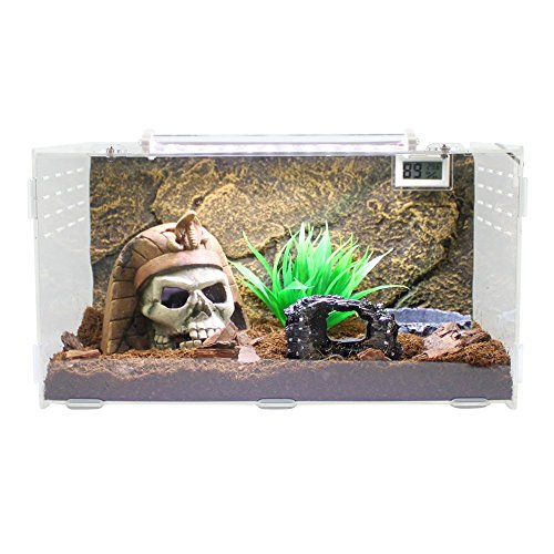 Dalle Craft Acrylic Artificial Landscapes Reptile Terrarium 'Landscape of Egyptian Pharaoh Skull with Broken Wine Barrels and Grass' for Larval Amphibians (Type1) (Wine Barrel Pet Food compare prices)