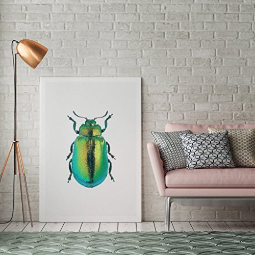 beetle-poster-beetle-print-beetle-illustration-insect-print-modern-home-decor-insect-wall-art-nurser