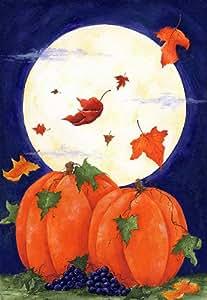 Toland Home Garden Pumpkin Moon 12.5 x 18-Inch Decorative USA-Produced Garden Flag