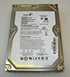 Seagate ST3250310NS - 250GB BARRACUDA 32MB - 7200RPM, RAID Version - RAID VERSION Western Digital version - Warranty: 2Y