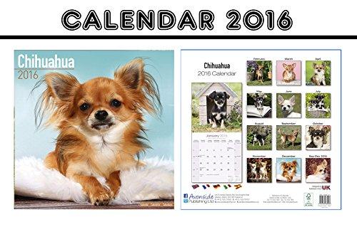 CHIHUAHUA DOGS CALENDARIO CALENDAR 2016 PDF