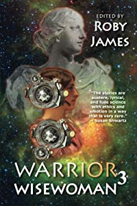 Warrior Wisewoman 3 (Volume 3) by Jennifer R. Povey