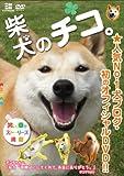 柴犬のチコ。 [DVD]