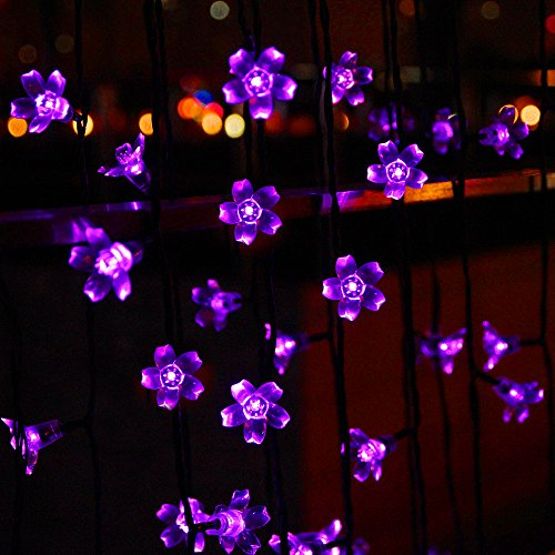 Solar Outdoor String Lights By Innoo Tech: Innoo Tech 50 Led Solar String Lights Outdoor Fairy Purple