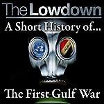 The Lowdown: A Short History of the First Gulf War | Robert Johnson