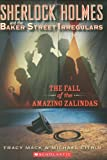 The fall of the Amazing Zalindas 封面