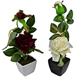Thefancymart Set Of 2 Piece Artifical Rose Plants With Pots Style Code -11