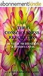 The Consciousness Revolution: Beyond...
