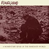 A Momentary Sense Of The Immediate World by Flourishing (2010-03-30)