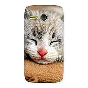 Delighted Premium Cute Sleepings Cat Multicolor Back Case Cover for Moto G