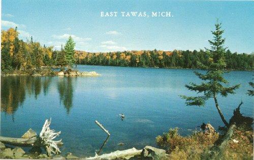 1960s Vintage Postcard - Lake Scene - East Tawas
