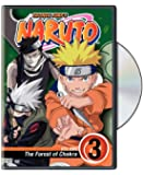 Naruto, Vol. 3 - The Forest of Chakra