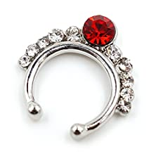 buy Clearance Sale! Stay Strong 316L Surgical Steel Fake Septum Non-Piercing Nose Ring 11-Gemmed Red&White Cz Crystals Nose Hoop Body Jewelry (Silver Color)