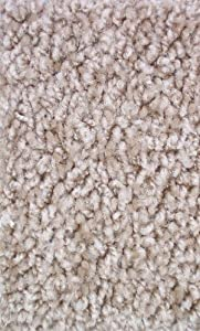 "10'x12' Graham Cracker Area Rug Carpet. MULTIPLE SIZES, SHAPES and COLORS TO CHOOSE FROM. Home area rugs, runner, rectangle, square, oval and round. Hem-stitching on all four sides. 22 oz. Face Weight. 1/2"" Thick. Polyester. Loose and Soft Frieze."