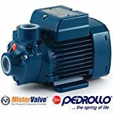 Pedrollo Electric Water Pump PKm peripheral impeller PKm 60 0.5 HP 230/460V Domestic use and in particular for distributing water in combination with small pressure tanks irrigation of gardens