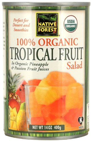 Native Forest Organic Tropical Fruit Salad, 14-Ounce Cans (Pack of 6) (Canned Mangoes compare prices)