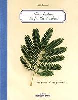 Mon Herbier des feuilles d'arbres...Des parcs et des jardins