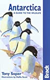 Antarctica Wildlife 5th (Bradt Guides)