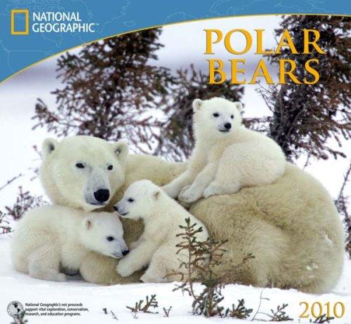 National Geographic Polar Bears 2010 Calendar