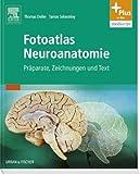 Fotoatlas Neuroanatomie: Präparate, Zeichnungen und Text - mit Zugang zur mediscript Lernwelt