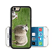 buy Liili Premium Apple Iphone 6 Iphone 6S Aluminum Snap Case A Sheep And A Lamb Image Id 9419135