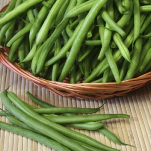 8 oz, Kentucky Wonder 125 Bush Bean, Seeds, Organic Heirloom Bean 40-45 days! (Bush Beans 8 Oz compare prices)
