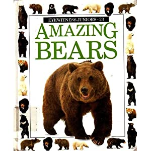AMAZING BEARS (Eyewitness Juniors)