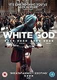 White God [DVD]