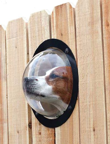 Buy Pets Fence Window Now!