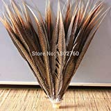 Maslin Beautiful 50 PCS/lot Natural Pheasant Tail Feathers Long 50-60 cm / 20-24 inche Stage Celebration Decoration