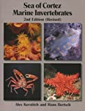 img - for By Alex Kerstitch and Hans Bertsch Sea of Cortez Marine Invertebrates - 2nd Edition (Revised) (2nd Second Edition) [Paperback] book / textbook / text book