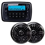 Milennia MPK21 Stereo Package with PRV21 Receiver and SPK652 Speakers - Black
