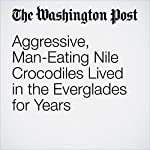 Aggressive, Man-Eating Nile Crocodiles Lived in the Everglades for Years | Darryl Fears