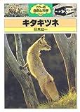 キタキツネ (カラー版自然と科学 26)