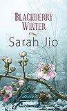 Blackberry Winter (Center Point Premier Fiction (Large Print))