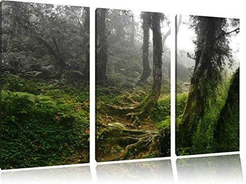 3-pezzi-immagine-incontaminata-foresta-pluviale-nero-bianco-immagine-tela-120x80-su-tela-xxl-enormi-